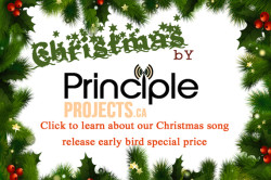 Principle Projects Ad for xmas early bird 571 BY 379